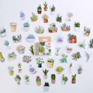 caixa de adesivos com tema de suculentas cactos plantas